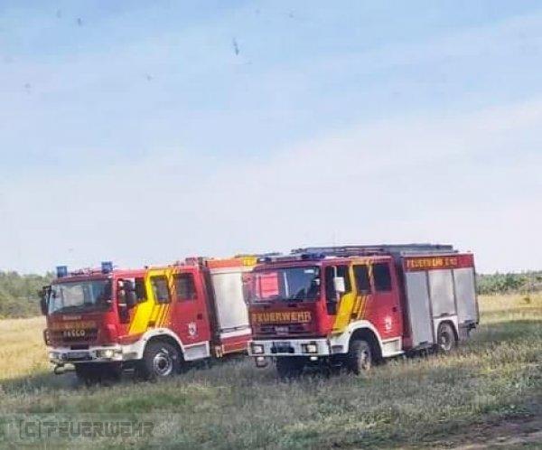 Brandeinsatz B:Wald-Groß/WSP vom 13.09.2020     (C) Feuerwehr Halbe (2020)